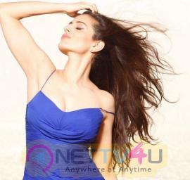 Ameesha Patel Hot New Pics Hindi Gallery