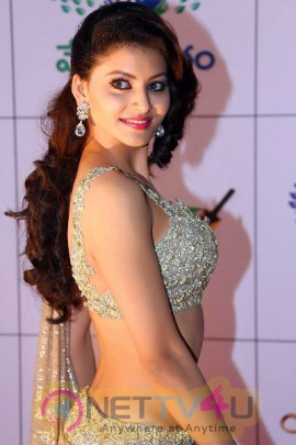 Actress Urvashi Rautela Hot And Sexy Pics Telugu Gallery