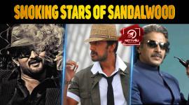 Smoking Stars Of Sandalwood