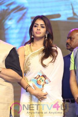 Oxygen Telugu Movie Audio Launch Stills Telugu Gallery