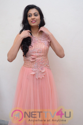 Actress Neha Hinge Lovely Images