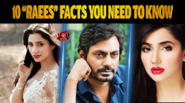 """Top 10 """"Raees"""" Facts You Need To Know"""