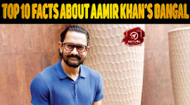 Top 10 Facts About Aamir Khan's Dangal