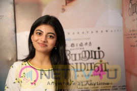 Actress Anandhi Exclusive Interview Pics Tamil Gallery