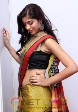 Images Of Naziya Khan With Saree  Tamil Gallery