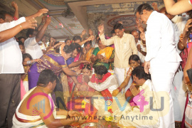 Jaguar Thangam Son Vijaya Jaguar's Wedding Stills
