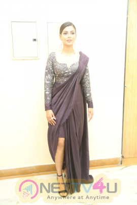 Actress  Anisha Ambrose Latest Pretty Stills Telugu Gallery