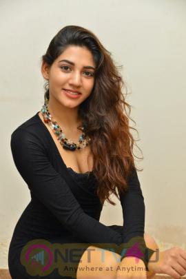 Actress  Sonakshi Shing Beautiful Stills  Telugu Gallery