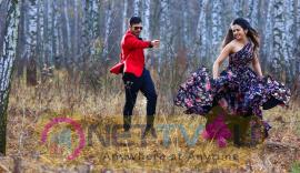 Actor Sai Dharam Teja Telugu Movie Winner Nice Pics Telugu Gallery