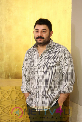 Actor Arvind Swamy Exclusive Interview Images Telugu Gallery