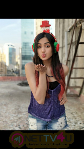 Actress Adah Sharma Christmas Celebration Photos Hindi Gallery