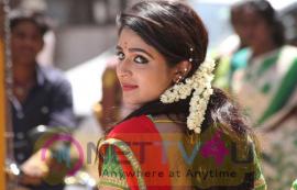 Actress Malavika Wales Attractive Photos Tamil Gallery