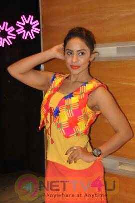Telugu Actress Sri Reddy.photos Stills  Telugu Gallery
