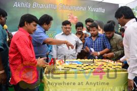 Ram Charan Birthday Celebrations By Allu Aravind Telugu Gallery