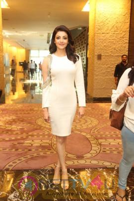 Kajal Aggarwal On MLA Movie Success Meet Telugu Gallery