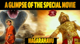 A Glimpse Of The Special Movie Nagarahavu