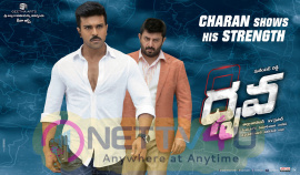 Super Weekend At The Box-Office For Mega Power Star Ram Charan's Dhruva  Telugu Gallery