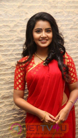 Actress Anupama Parameshwaran Lovely Images At Shatamanam Bhavati Movie Success Meet Telugu Gallery