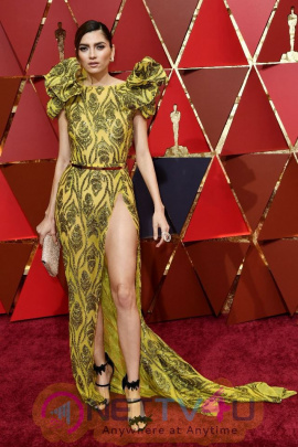Blanca Blanco Hot Legs Show At Oscars 2017 Red Carpet In Hollywood
