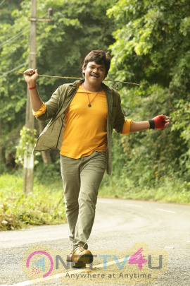 Driver Ramudu Movie Stills