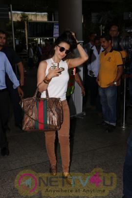 Ameesha Patel Spotted At Airport Stills Hindi Gallery