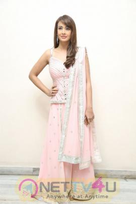 Actress Preeti Jhangiani Good Looking Images Hindi Gallery