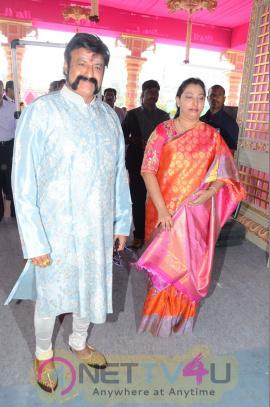 Celebs At T Subbarami Reddy Grandson Keshav And Veena Wedding Photos