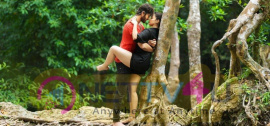 New Movie Rogue Magnificent Posters Telugu Gallery