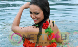 Actress Sana Khan Hot And Sexy Pics Hindi Gallery