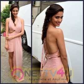 Disha Patani Lstest Hot And Sexy Pics Hindi Gallery