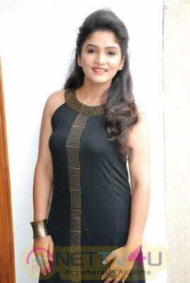 Huliraya Audio Release Grand Pictures Kannada Gallery