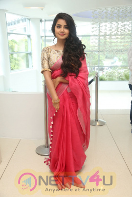 Actress Anupama Parameswaran At Vunnadi Okate Zindagi Movie Thanks Meet Stills