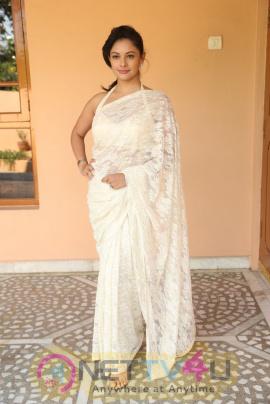 Actress Pooja Kumar  New Looking Photos Telugu Gallery