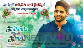 Actor Naga Chaitanya Birthday Poster Telugu Gallery