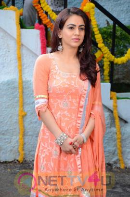 Actress Aksha Pardasany Luminous Photos At Bhadradri Movies Production No 1 Movie Opening