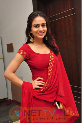 Actress Aksha Pardasany Statuesque Stills At Kalamandir 6th Anniversary Celebrations
