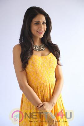 Actress Lavanya Tripathi Good Looking Photos At Srirastu Subhamastu Movie Song Launch Telugu Gallery