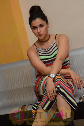 Actress Mannara Chopra Beautiful Photos At Jakkanna Platinum Disc Function Telugu Gallery
