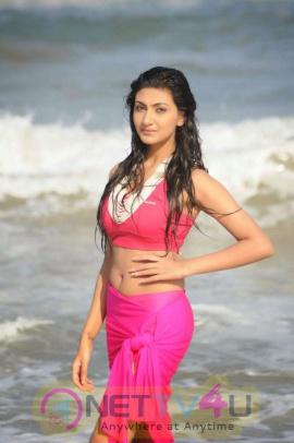 Actress Neelam Upadhyay Latest Hot Photos Telugu Gallery