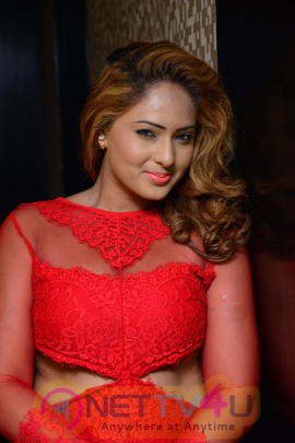 Actress Nikesha Patel Red Hot Beautifull Images Telugu Gallery
