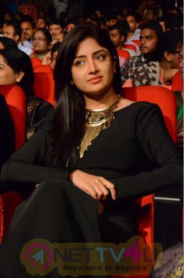 Actress Poonam Kaur Statuesque Photos At Thikka Movie Audio Launch