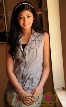 Actress Pranitha Subhash Latest Glamour Stills Kannada Gallery