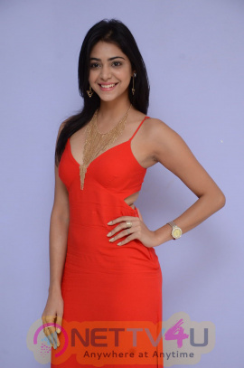 Actress Priyanka Bhardwaj Good LookingStills At Mister 420 Movie Logo Launch Telugu Gallery