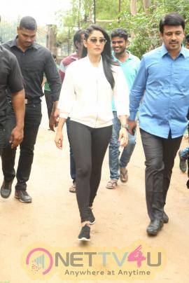 Actress Regina Cassandra And Celebs At Haritha Haram Event Beautiful Photos Telugu Gallery