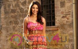 Actress Richa Gangopadhyay Latest Glamorous Pics
