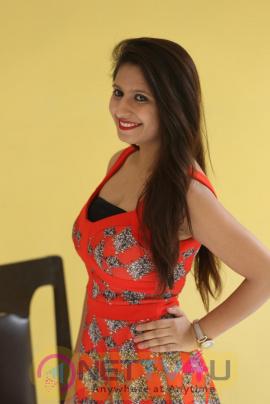 Actress Shaheena Latest Glamour Stills Telugu Gallery