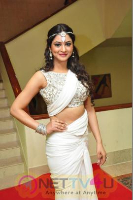 Actress Shillpi Sharma Statuesque Photos Telugu Gallery