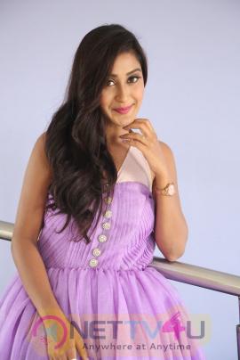 Actress Shravya Rao Lovely Images At Vanavillu Movie Trailer Launch Telugu Gallery