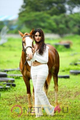 Actress  Sony Charista Latest Glamorous Stills Telugu Gallery