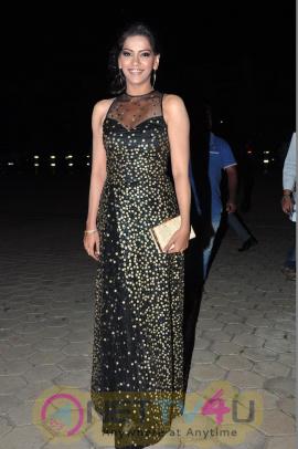Actress Zabyn Khan Latest New Photos Telugu Gallery